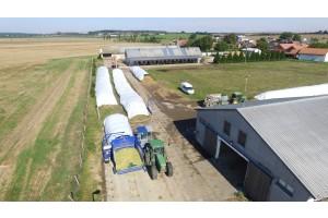 Vakování kukuřice